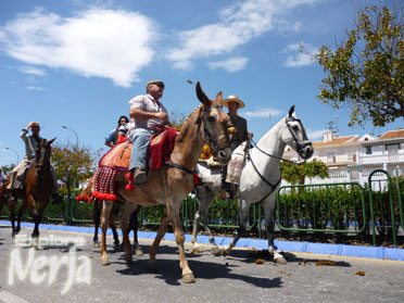 Even humble mules and donkeys take part in San Isidro